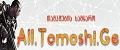 tamashebi.net